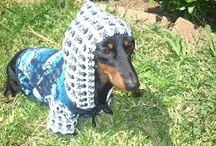 Hound Hoodies / 'Hoodie' = pejorative term for a teenage social misfit mutt as identified by the wearing of a hooded top to conceal the face from view. (Just fur isn't enough.)