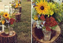 "Amanda's Wedding ""Wood You Be Mine"" / by Amanda Faneck"