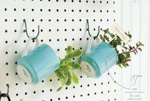 decoracion de plantas