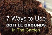 Kaffegrut i hagen.