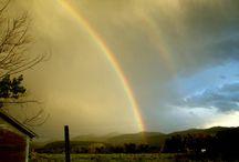Colorful Rainbows