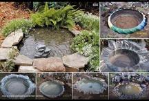 pond in agterplaas
