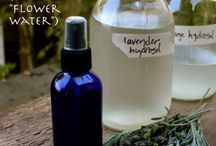 Herbs, Tinctures, Hydrosols, and Extracts