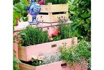 Jardins, ambiance tamisée, cocooning,...