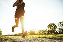 wellness fitness