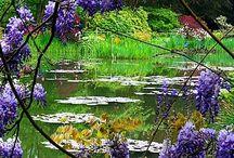 Quadros de Monet