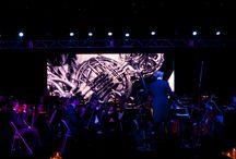 The Miami Symphony Orchestra (MISO)
