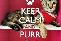 PURR ON...