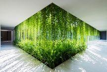Gardens / Garden architecture