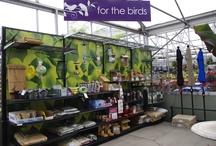 Bird Feeding Displays