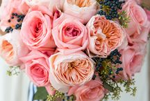 Flowers, flowers, flowers <3 / I think that flowers are just fascinating