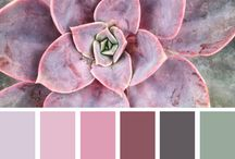 Style Color palett floral