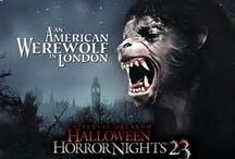 Horror Movies / The Exorcist,  Silence of the Lamb, American Werewolf in London, Freddy vs Jason
