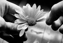 Black, white & more... / feeling
