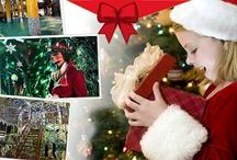 Navidad, Navidad, Dulce Navidad / La Navidad es un tiempo para disfrutar en compañía de familia y amigos. Momentos de reuniones, reencuentros y celebraciones que sacan lo mejor de cada uno.