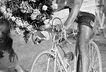 Cycling chic