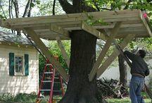 Treehouse ♥️