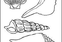 sealife clip art