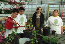 Garden Field Trips and Excursions / Ideas for garden and agriculture themed field trips.