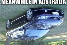 Best Travel Memes / Funny pictures relating travel on the web