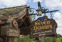 Seven Dwarfs Mine Train at Magic Kingdom / Seven Dwarfs Mine Train at Magic Kingdom