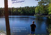 #OpplevOslo sommeren 2017 / Her finner du bilder og plakater fra #OpplevOslo-kampanjen sommeren 2017.