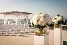 Roco Wedding