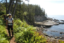 West Coast Trail / I hiked the West Coast Trail on Vancouver Island in 2011.  