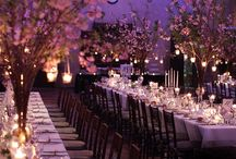 Dream Wedding  / by Ali Wiggins