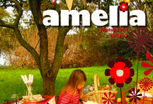 Amelia covers / Featuring the covers of all of our issues