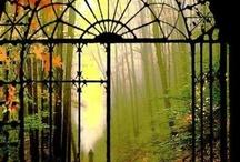 Herreria puertas