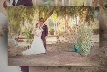 Leo Carrillo Ranch Wedding and Photographers
