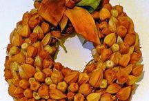 Őszi hangulatok. / Imádom az ősz ezer színét