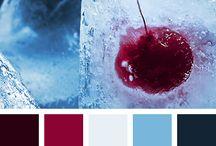 Colors- Burgund