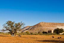 Morocco & Jordan Family Tours