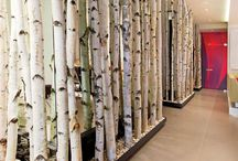 Use birch trees deco