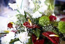 BloomZ ❤️ Arrangementen Zakelijke Markt / BloomZ is uw bloemarrangeur voor zakelijke als particuliere aangelegenheden. Met pure, natuurlijke materialen zijn de mogelijkheden oneindig:van exclusieve, uitheemse bloemen tot materialen van eigen bodem.