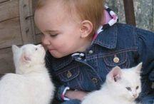 animal cutees.