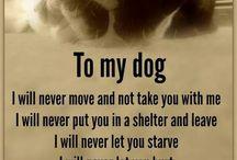 I ❤️ dogs