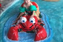 Cape Codder Indoor Water Park / The Cape Codder Resort in Hyannis, MA has an indoor water park that's open year round