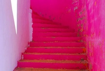 fuxia pink