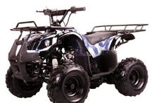 Four-wheelers and Dirt Bikes / by Melissa Smith