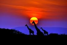 kresby západ slnka
