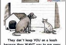 Dog Cartoons