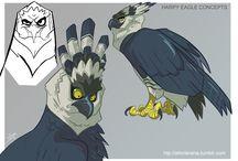 sketches birds