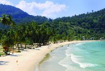 Trinidad and Tobago - St. Augustine / Trinidad and Tobago make up a two-island nation in the Caribbean and are vastly different. Spend a semester with us exploring Creole traditions and cuisines!