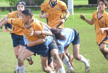 wil's rugby