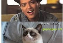 Bruno Memes