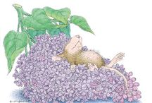 House Mouse Spring