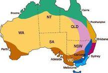 Shady Garden / Plants for shady gardens - Zone4 (cold) of Australia